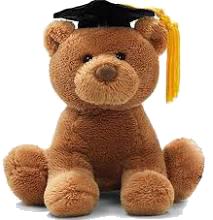 Gund Student Bear
