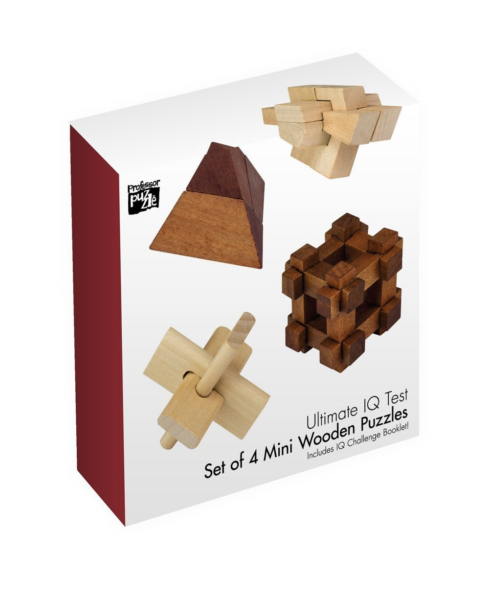 Set of 4 Mini Wooden Puzzle by Professor Puzzle