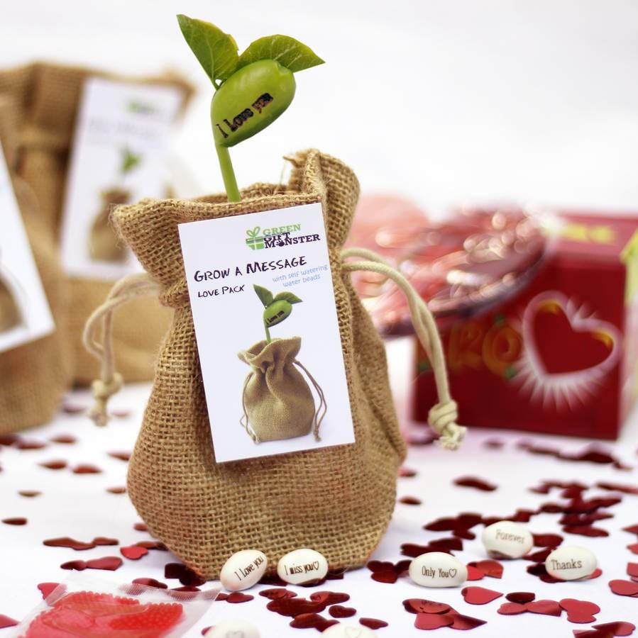 """""""Love"""" Grow A Message Gift Set"""
