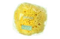 """Hydrea London Honeycomb Sea Sponge 3.5 - 4"""""""